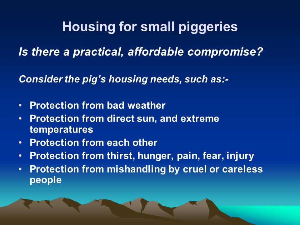 Housing for small piggeries Is there a practical, affordable compromise? Consider the pigs housing needs, such as:- Protection from bad weather Protec