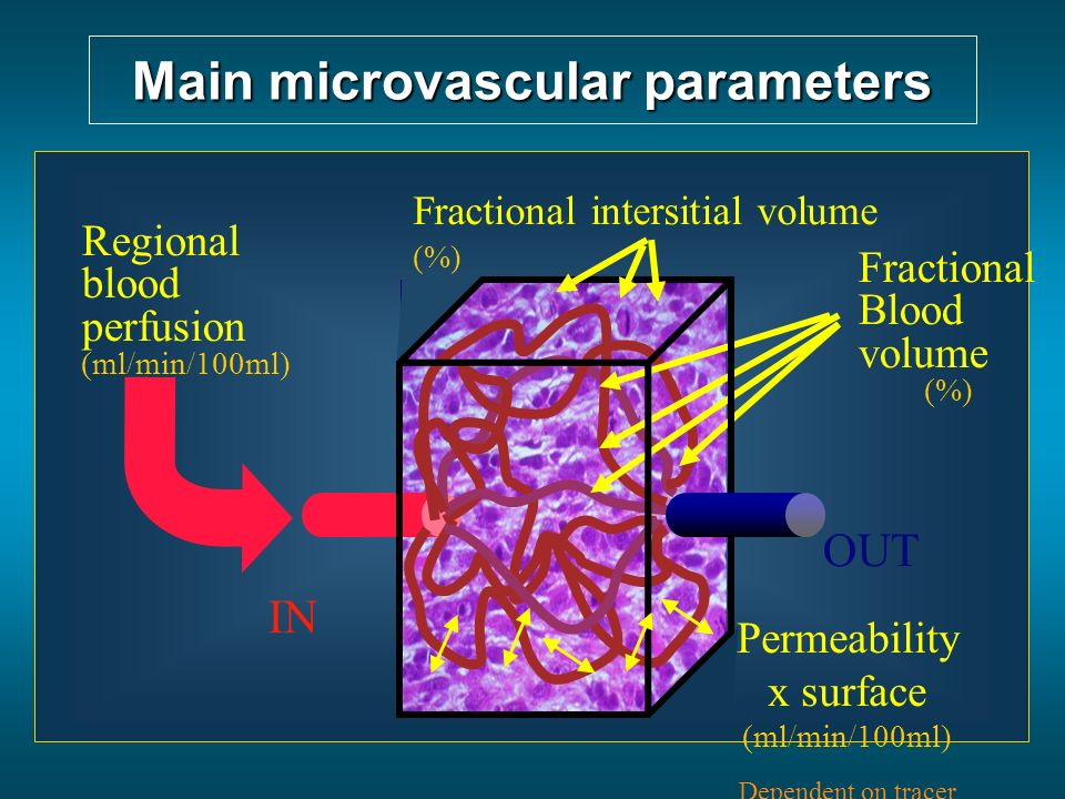IN OUT Main microvascular parameters Regional blood perfusion (ml/min/100ml) Fractional Blood volume (%) Permeability x surface (ml/min/100ml) Depende