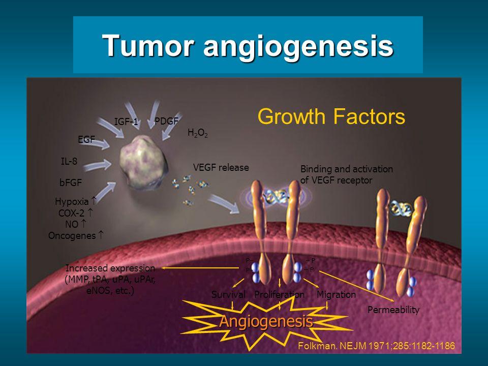 Sunitinib /Sutent Sorafenib / Nexavar Sorafenib Avastin RAD001 Patel Br J Cancer 2006 Anti-angiogenic treatment Endothelial Cell membrane