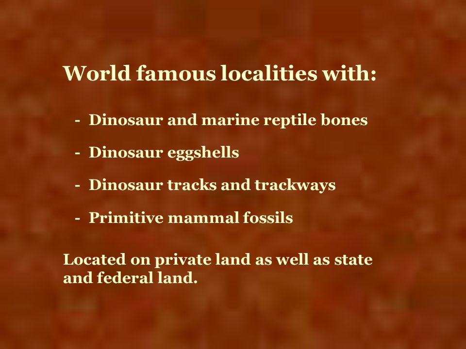 World famous localities with: - Dinosaur and marine reptile bones - Dinosaur eggshells - Dinosaur tracks and trackways - Primitive mammal fossils Loca