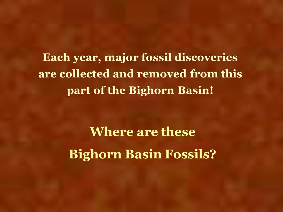 Each year, major fossil discoveries are collected and removed from this part of the Bighorn Basin! Where are these Bighorn Basin Fossils?