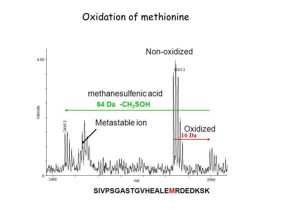 Oxidation of methionine 16 Da Non-oxidized Oxidized 64 Da -CH 3 SOH Metastable ion SIVPSGASTGVHEALEMRDEDKSK methanesulfenic acid