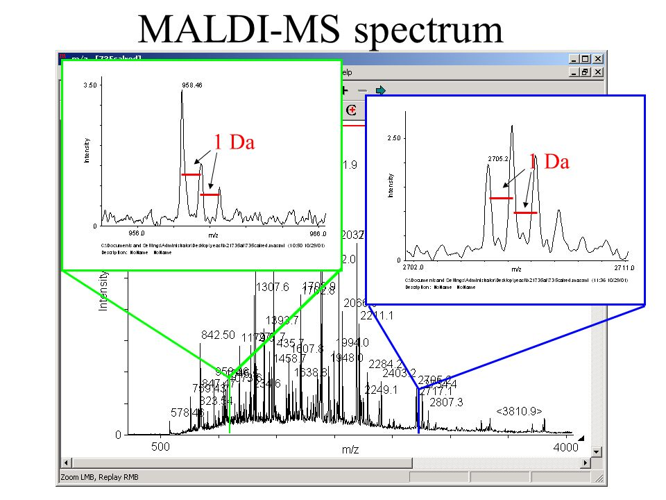 MALDI-MS spectrum 1 Da