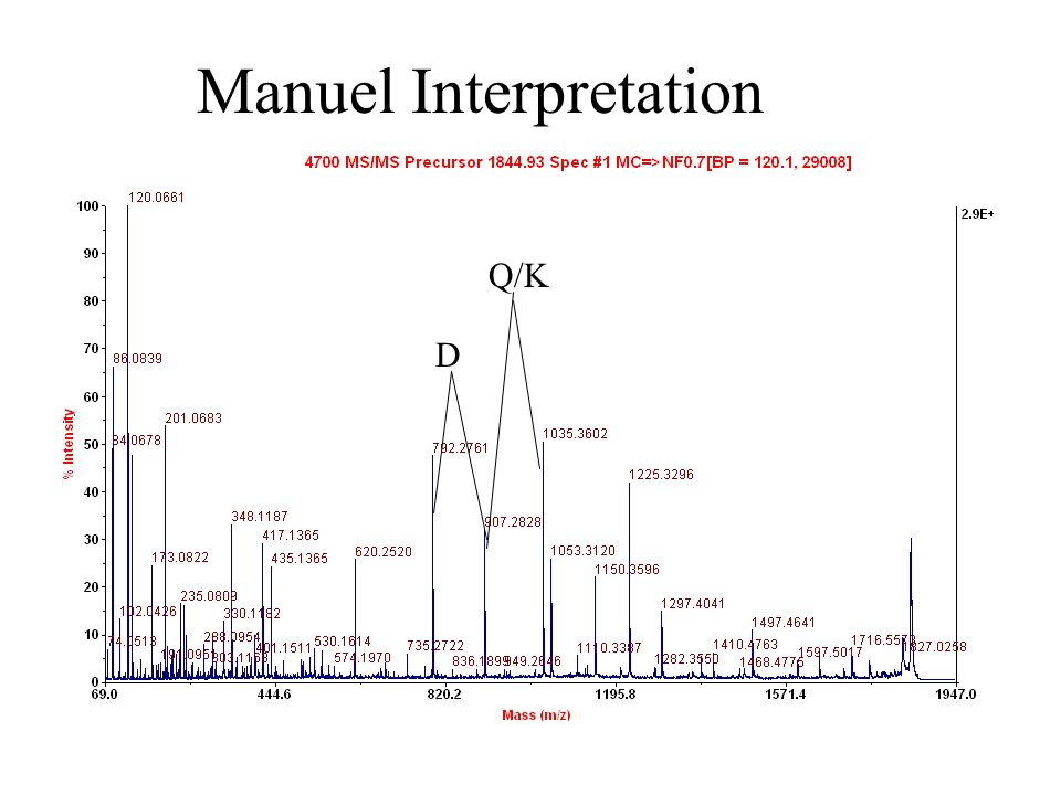 D Q/K Manuel Interpretation