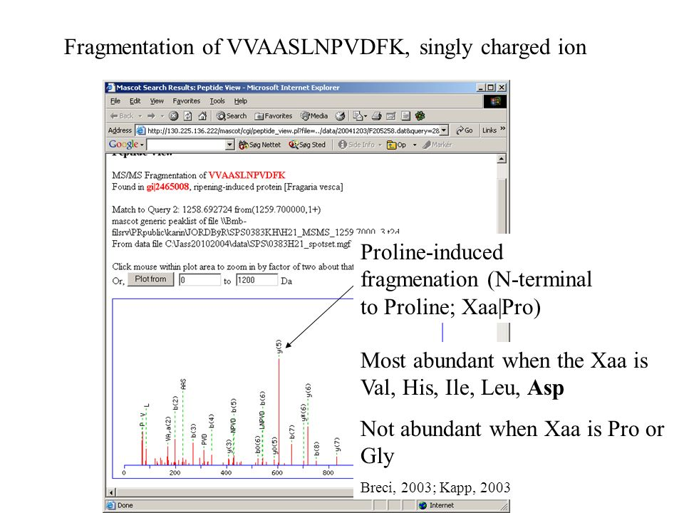 Proline-induced fragmenation (N-terminal to Proline; Xaa|Pro) Most abundant when the Xaa is Val, His, Ile, Leu, Asp Not abundant when Xaa is Pro or Gly Breci, 2003; Kapp, 2003 Fragmentation of VVAASLNPVDFK, singly charged ion