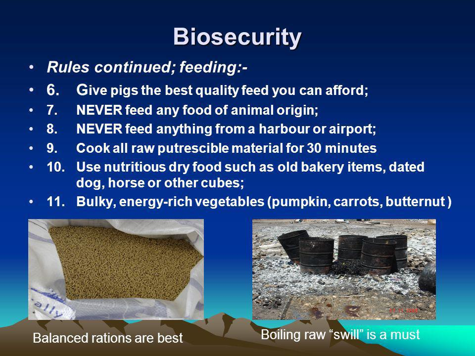 Biosecurity Rules continued; feeding:- 6.G ive pigs the best quality feed you can afford; 7.NEVER feed any food of animal origin; 8.NEVER feed anythin