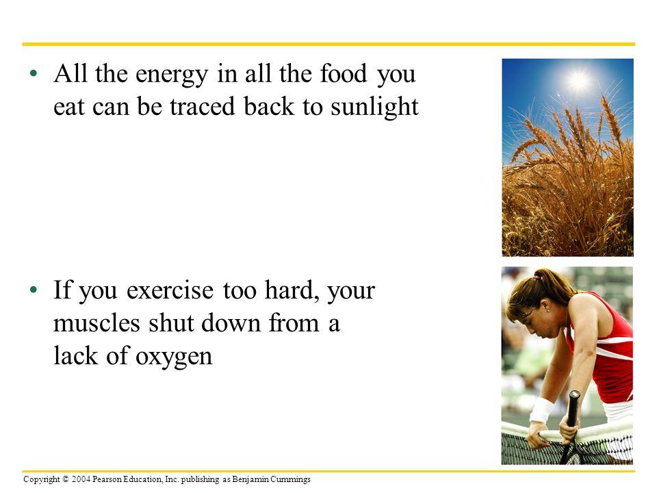 Copyright © 2004 Pearson Education, Inc.
