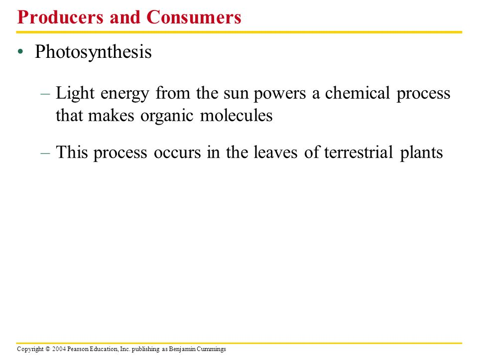 Copyright © 2004 Pearson Education, Inc. publishing as Benjamin Cummings Photosynthesis Producers and Consumers –Light energy from the sun powers a ch