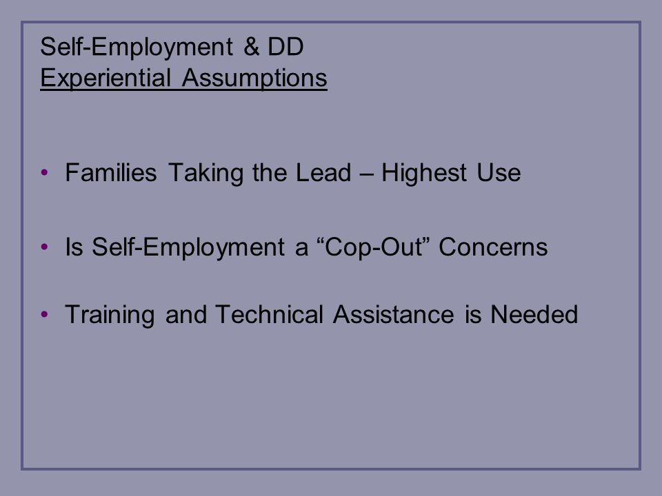 Self-Employment & DD Experiential Assumptions Families Taking the Lead – Highest Use Is Self-Employment a Cop-Out Concerns Training and Technical Assistance is Needed