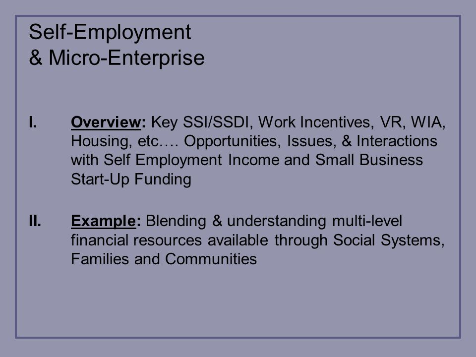 Self-Employment & Micro-Enterprise I.Overview: Key SSI/SSDI, Work Incentives, VR, WIA, Housing, etc….