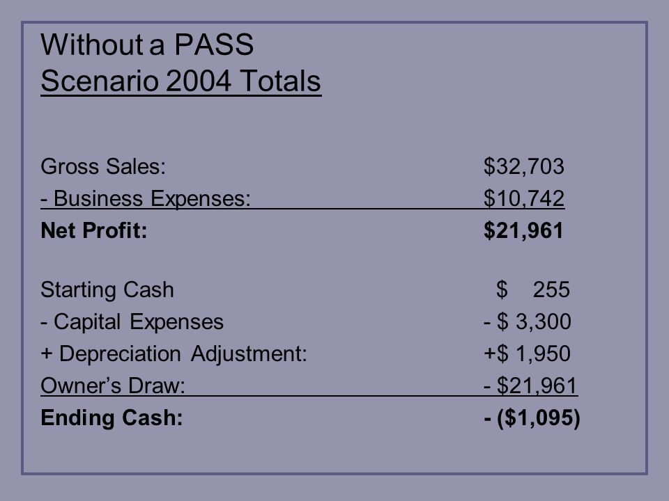 Without a PASS Scenario 2004 Totals Gross Sales:$32,703 - Business Expenses:$10,742 Net Profit:$21,961 Starting Cash $ 255 - Capital Expenses- $ 3,300 + Depreciation Adjustment:+$ 1,950 Owners Draw:- $21,961 Ending Cash:- ($1,095)