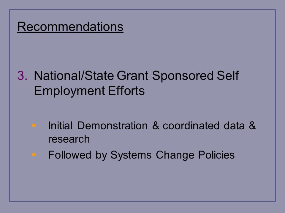 Recommendations 3.National/State Grant Sponsored Self Employment Efforts Initial Demonstration & coordinated data & research Followed by Systems Change Policies