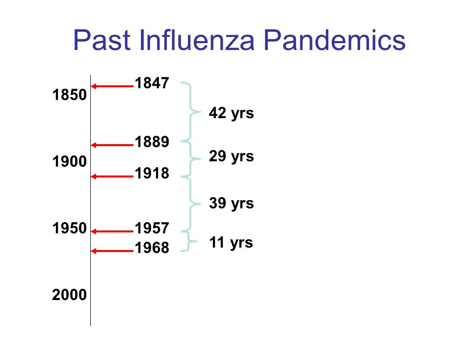 Past Influenza Pandemics 1900 1850 1950 2000 1847 1889 1918 1957 1968 42 yrs 29 yrs 39 yrs 11 yrs