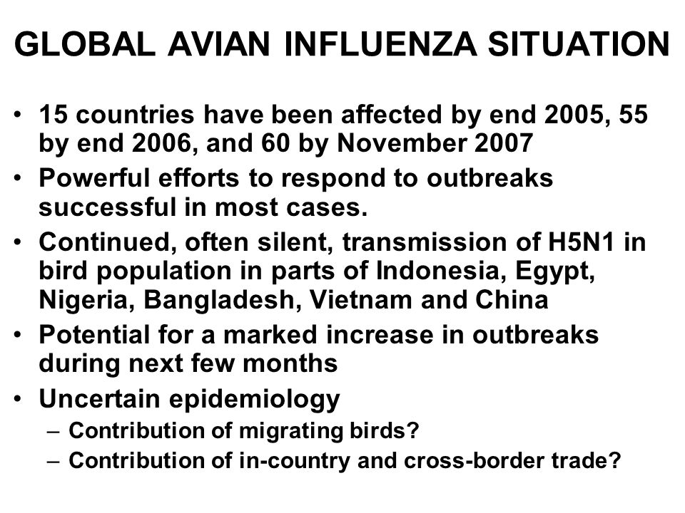 GLOBAL AVIAN INFLUENZA SITUATION 15 countries have been affected by end 2005, 55 by end 2006, and 60 by November 2007 Powerful efforts to respond to o