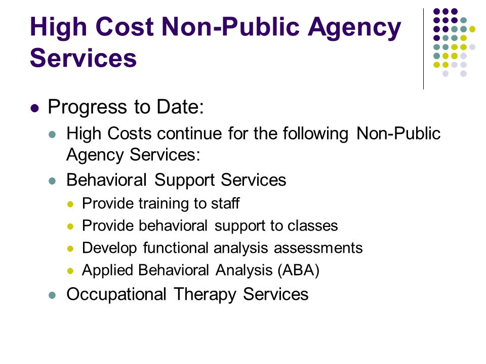 High Cost Non-Public Agency Services Progress to Date: High Costs continue for the following Non-Public Agency Services: Behavioral Support Services P