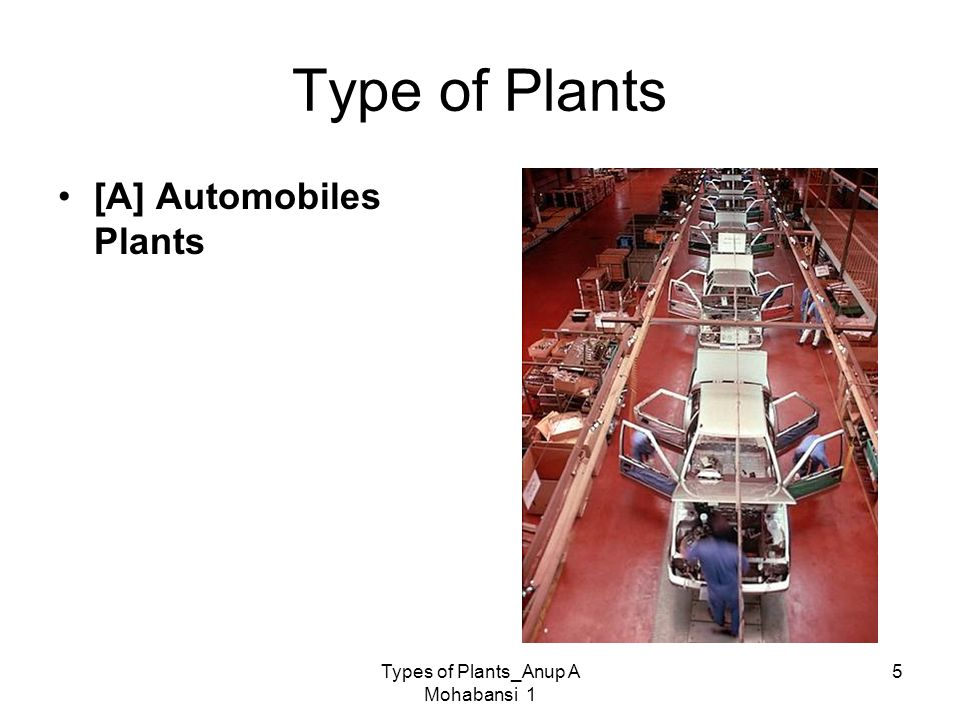 Types of Plants_Anup A Mohabansi 1 5 Type of Plants [A] Automobiles Plants