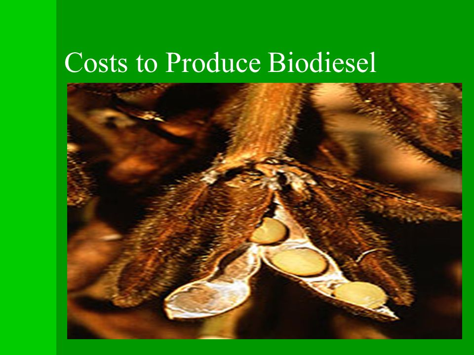 Costs to Produce Biodiesel