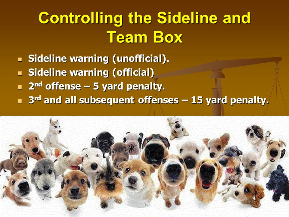 Controlling the Sideline and Team Box Sideline warning (unofficial). Sideline warning (unofficial). Sideline warning (official) Sideline warning (offi