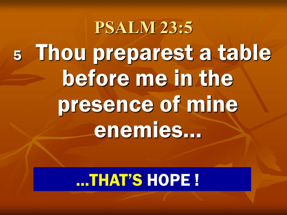 PSALM 23:5 5 Thou preparest a table before me in the presence of mine enemies…...THATS HOPE !