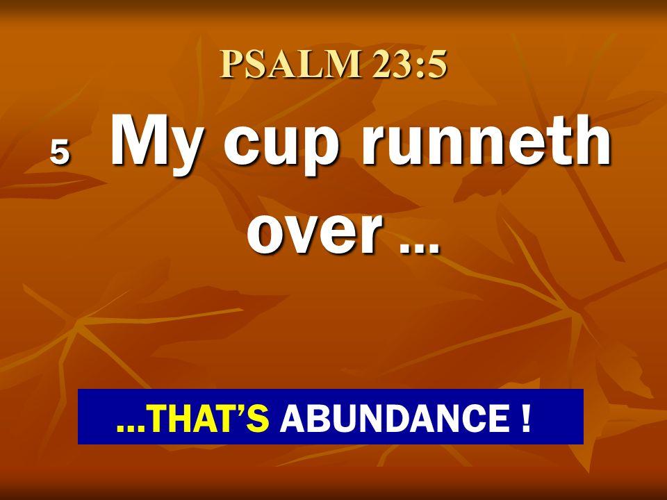 PSALM 23:5 5 My cup runneth over …...THATS ABUNDANCE !