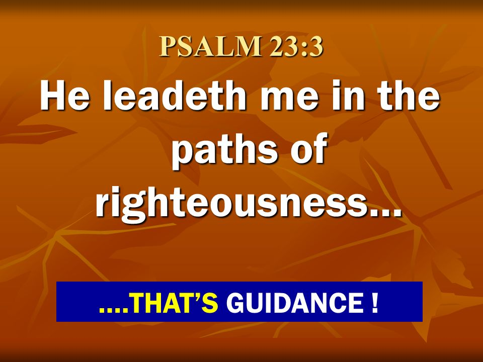 PSALM 23:3 He leadeth me in the paths of righteousness… ….THATS GUIDANCE !