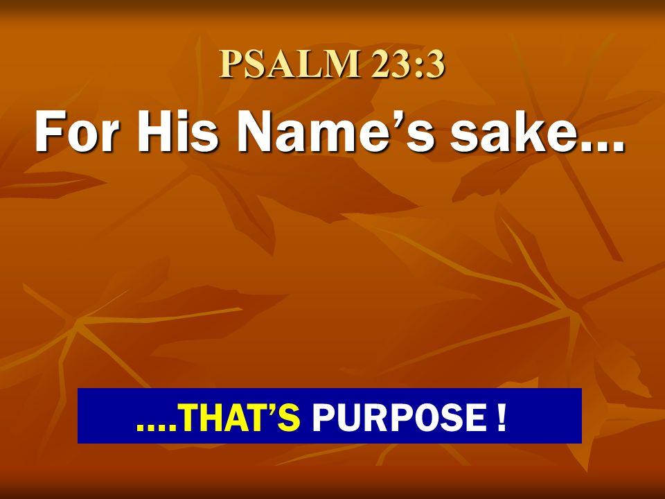 PSALM 23:3 For His Names sake… ….THATS PURPOSE !