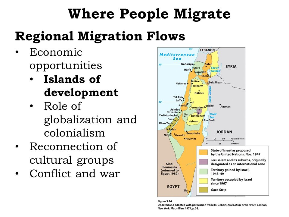 Regional Migration Flows Economic opportunities Islands of development Role of globalization and colonialism Reconnection of cultural groups Conflict