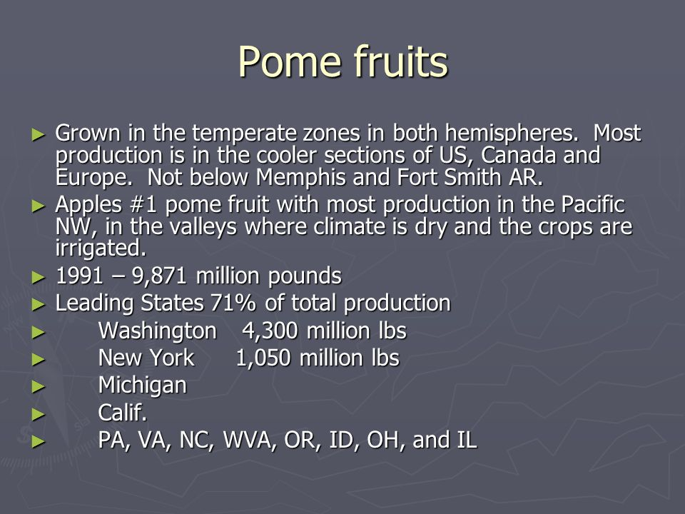 Pome fruits Grown in the temperate zones in both hemispheres. Most production is in the cooler sections of US, Canada and Europe. Not below Memphis an