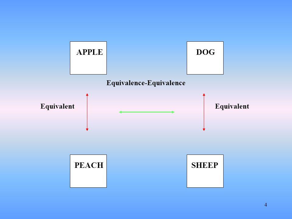 4 Equivalent APPLE SHEEPPEACH DOG Equivalence-Equivalence Equivalent