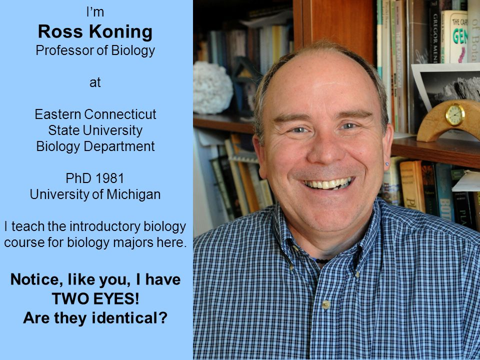 Im Ross Koning Professor of Biology at Eastern Connecticut State University Biology Department PhD 1981 University of Michigan I teach the introductor