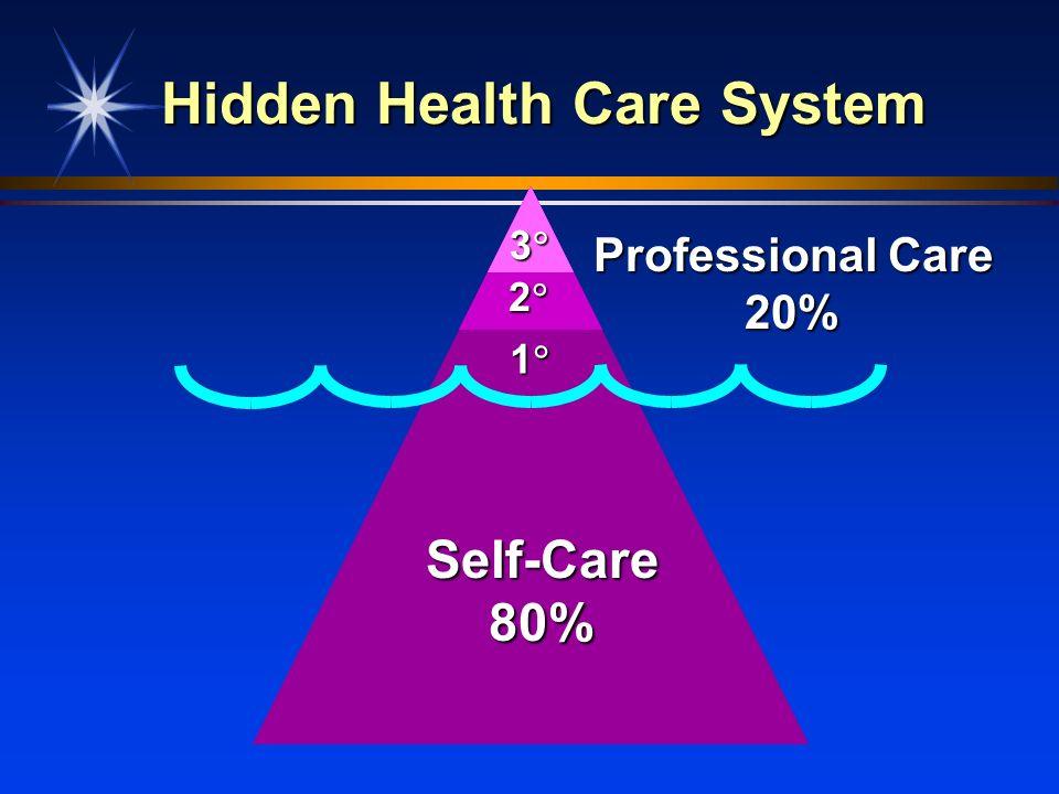 Hidden Health Care System Self-Care80% Professional Care 20% 2 1 3