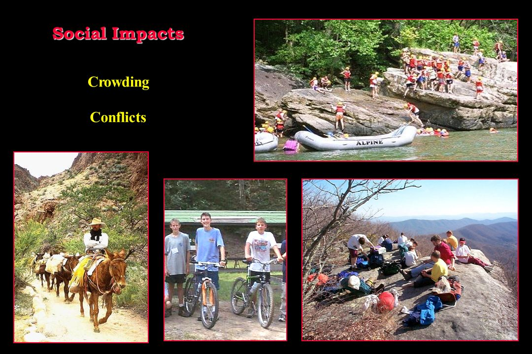 Social Impacts Crowding Conflicts
