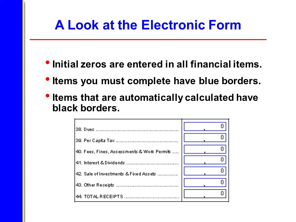 A Look at the Electronic Form Initial zeros are entered in all financial items. Items you must complete have blue borders. Items that are automaticall