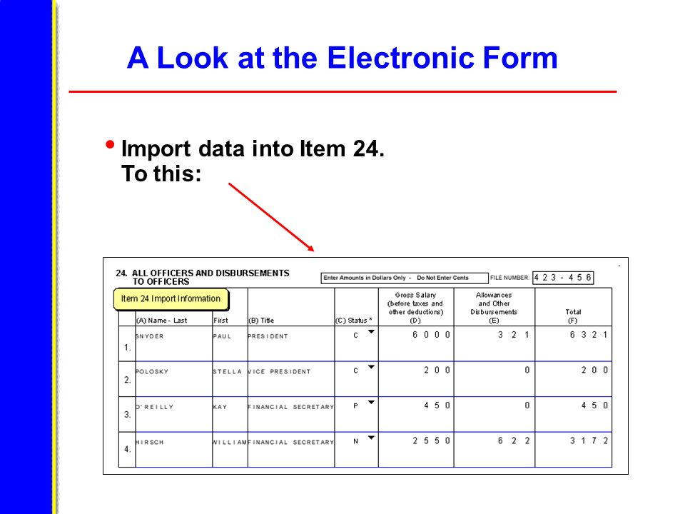 A Look at the Electronic Form Import data into Item 24. To this: