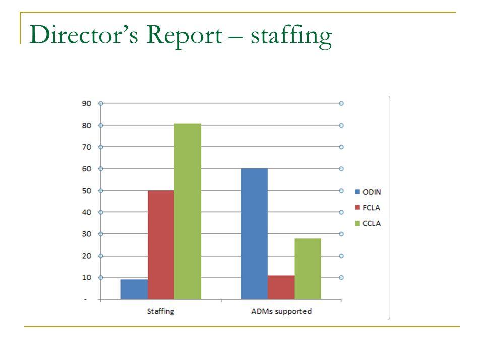 Directors Report – staffing