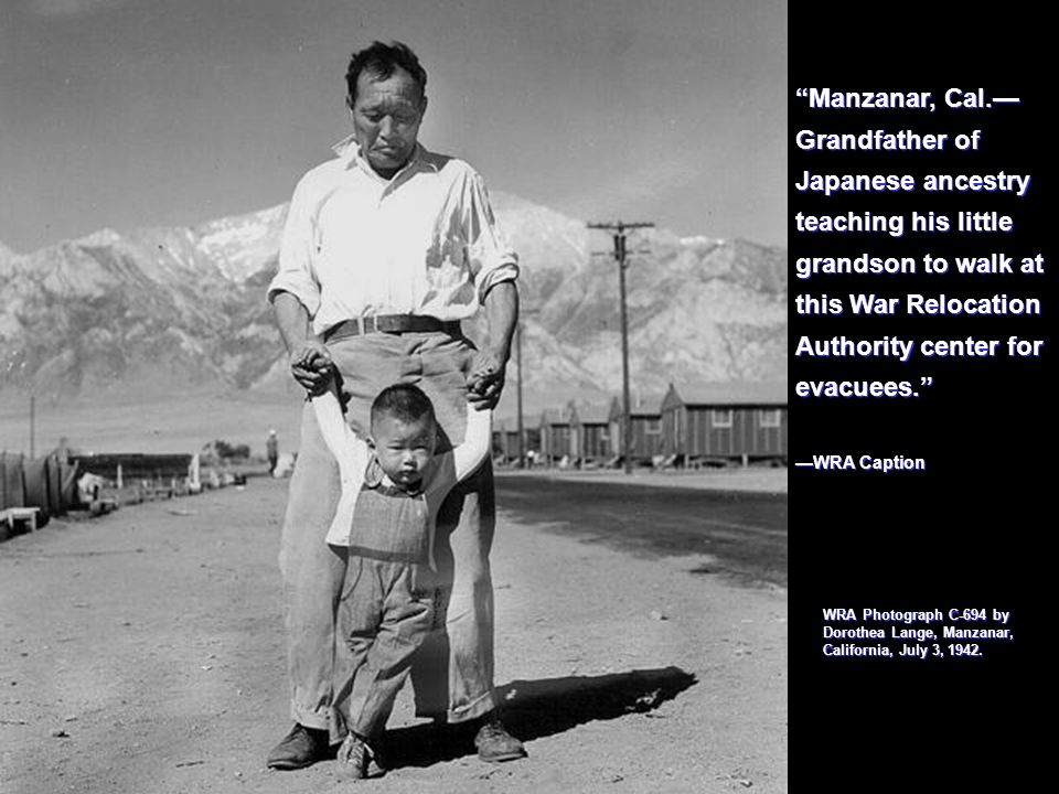 Manzanar, Cal. Grandfather of Japanese ancestry teaching his little grandson to walk at this War Relocation Authority center for evacuees. WRA Caption