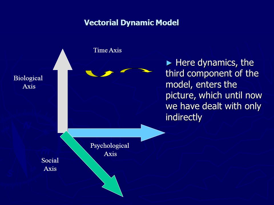 Biological Axis Psychological Axis Social Axis Time Axis Vectorial Dynamic Model Here dynamics, the third component of the model, enters the picture,