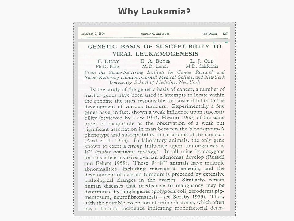 Why Leukemia?