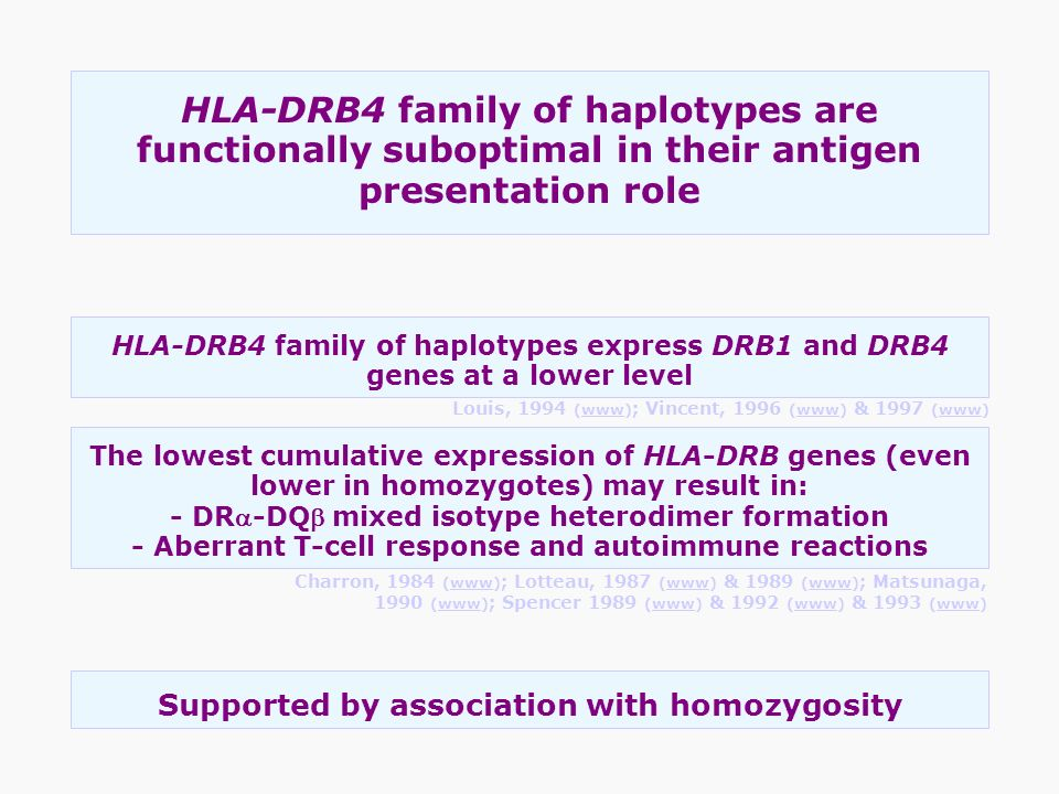 HLA-DRB4 family of haplotypes are functionally suboptimal in their antigen presentation role Supported by association with homozygosity HLA-DRB4 famil