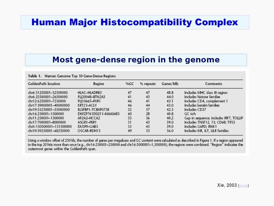 Xie, 2003 (www)www Human Major Histocompatibility Complex Most gene-dense region in the genome