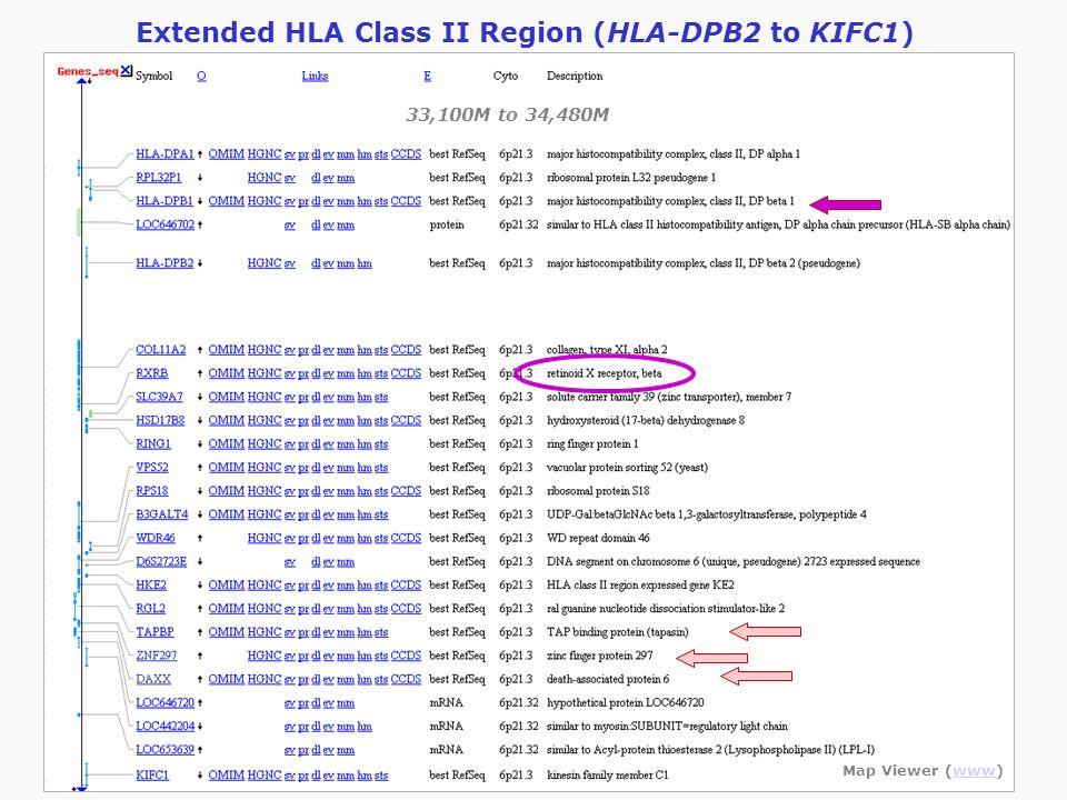 Extended HLA Class II Region (HLA-DPB2 to KIFC1) Map Viewer (www)www 33,100M to 34,480M