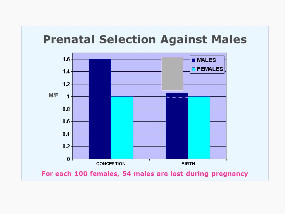 Prenatal Selection Against Males For each 100 females, 54 males are lost during pregnancy M/F