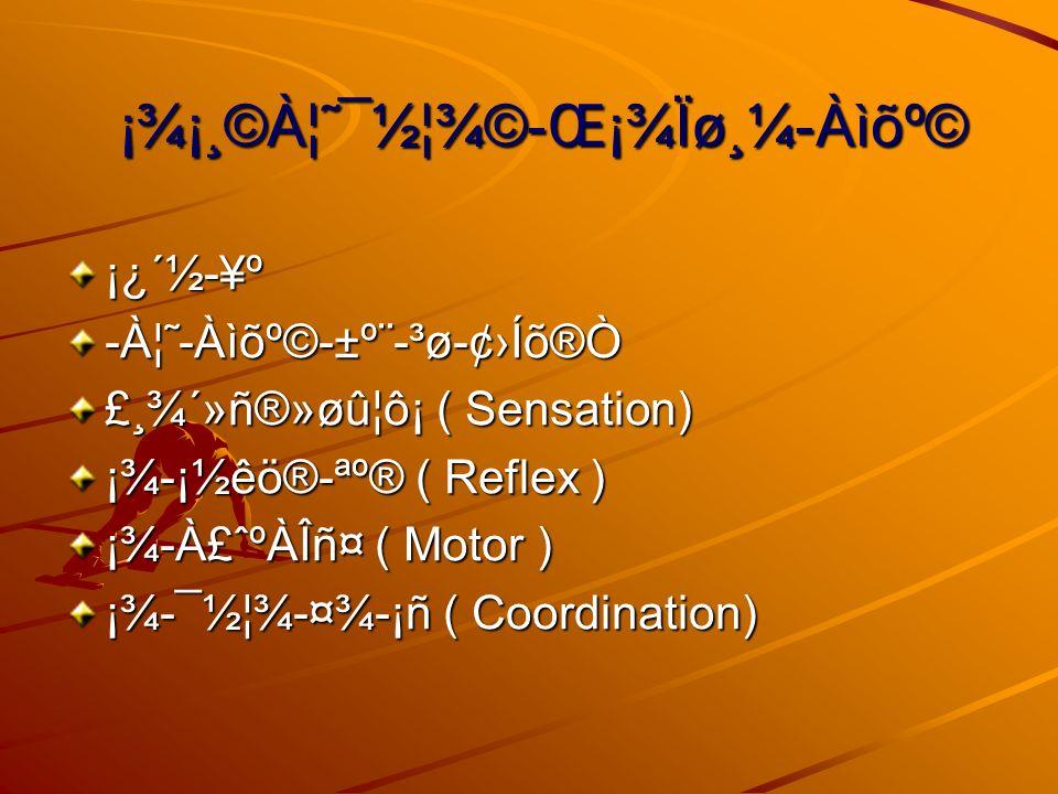 ¡¾¡¸©À¦˜¯½¦¾©-Œ¡¾Ïø¸¼-Àìõº© ¡¿´½-¥º-À¦˜-Àìõº©-±º¨-³ø-¢Íõ®Ò £¸¾´»ñ®»øû¦ô¡ ( Sensation) ¡¾-¡½êö®-ªº® ( Reflex ) ¡¾-À£ˆºÀÎñ¤ ( Motor ) ¡¾-¯½¦¾-¤¾-¡ñ ( Coordination)