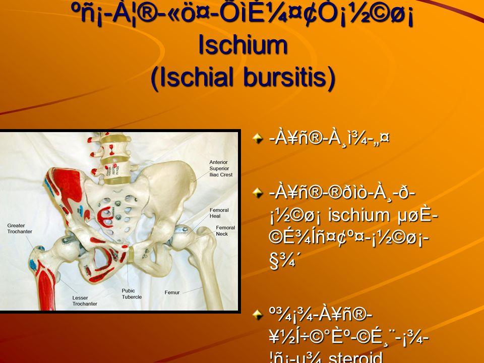 ºñ¡-À¦®-«ö¤-Õìɼ¤¢Ò¡½©ø¡ Ischium (Ischial bursitis) -À¥ñ®-À¸ì¾-¤ -À¥ñ®-®ðìò-À¸-ð- ¡½©ø¡ ischium µøÈ- ©É¾Íñ¤¢º¤-¡½©ø¡- §¾´ º¾¡¾-À¥ñ®- ¥½Í÷©°Èº-©É¸¨-¡¾- ¦ñ¡-µ¾ steroid