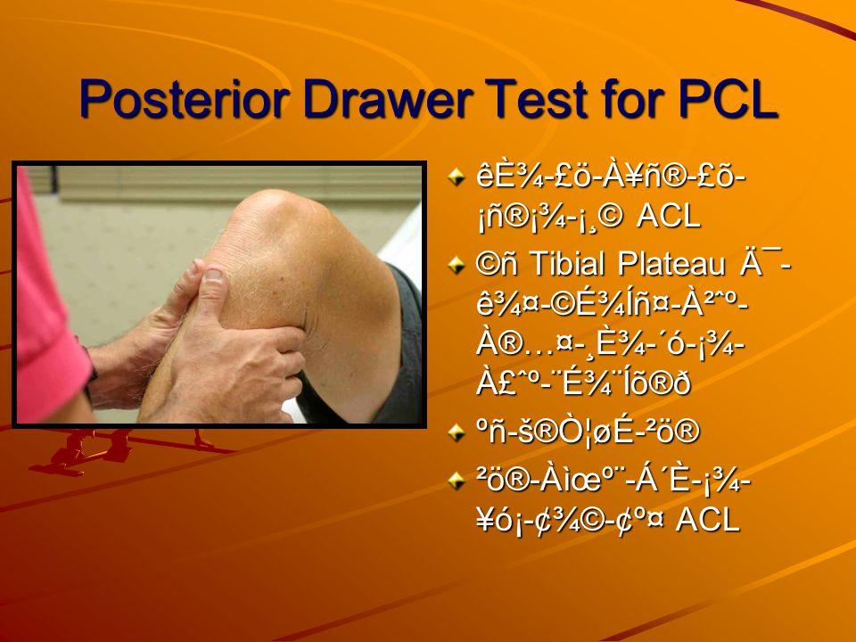 Posterior Drawer Test for PCL êȾ-£ö-À¥ñ®-£õ- ¡ñ®¡¾-¡¸© ACL ©ñ Tibial Plateau į- 꾤-©É¾Íñ¤-À²ˆº- À®…¤-¸È¾-´ó-¡¾- À£ˆº-¨É¾¨Íõ®ð ºñ-š®Ò¦øÉ-²ö® ²ö®-À윺¨-Á´È-¡¾- ¥ó¡-¢¾©-¢º¤ ACL