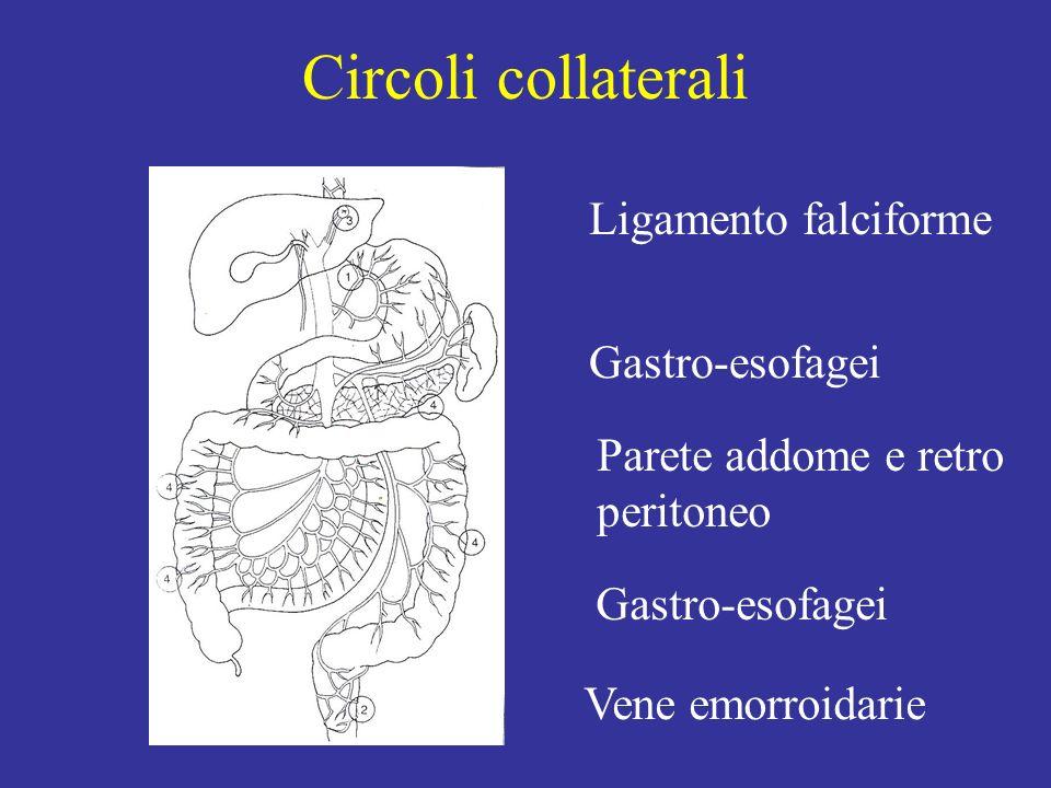 Circoli collaterali Ligamento falciforme Gastro-esofagei Vene emorroidarie Gastro-esofagei Parete addome e retro peritoneo