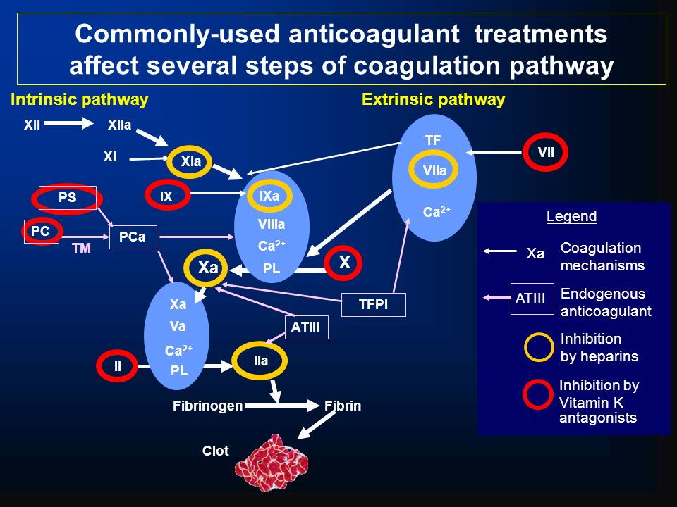 Commonly-used anticoagulant treatments affect several steps of coagulation pathway Clot Intrinsic pathwayExtrinsic pathway TM TF Ca 2+ Xa TFPI PCa PC