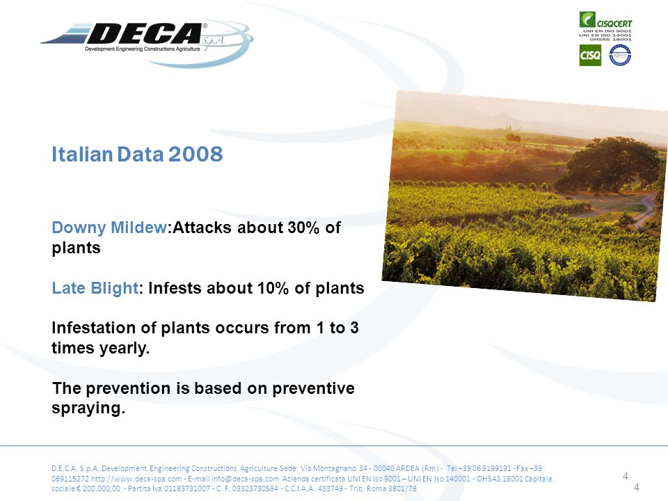 4 Downy Mildew:Attacks about 30% of plants Late Blight: Infests about 10% of plants Infestation of plants occurs from 1 to 3 times yearly.