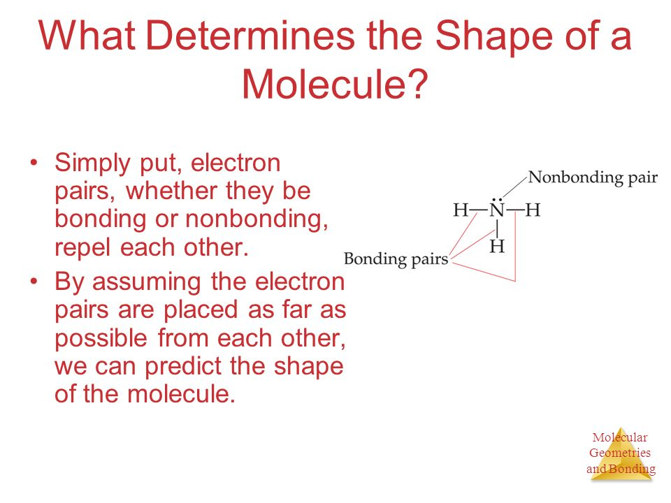 Molecular Geometries and Bonding What Determines the Shape of a Molecule.