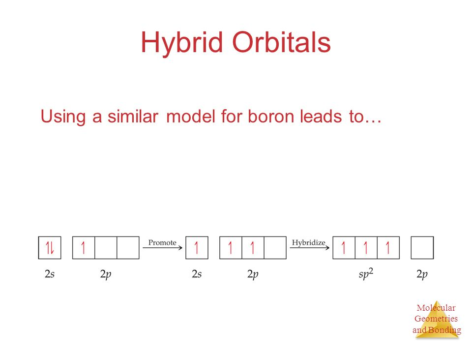 Molecular Geometries and Bonding Hybrid Orbitals Using a similar model for boron leads to…